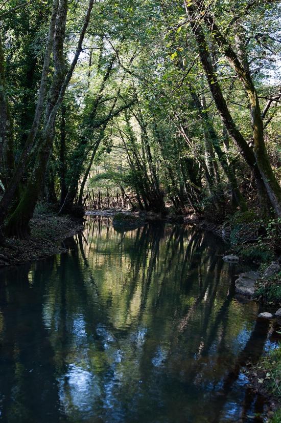 Canale di Monterano